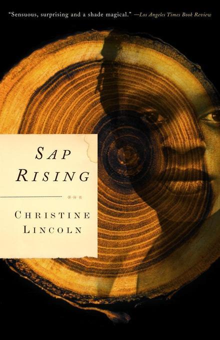 SAP Rising als Taschenbuch