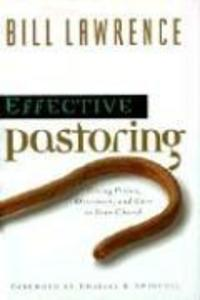 Effective Pastoring: Giving Vision, Direction, and Care to Your Church als Buch
