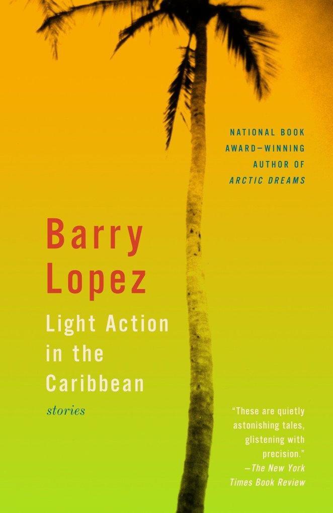 Light Action in the Caribbean: Stories als Taschenbuch