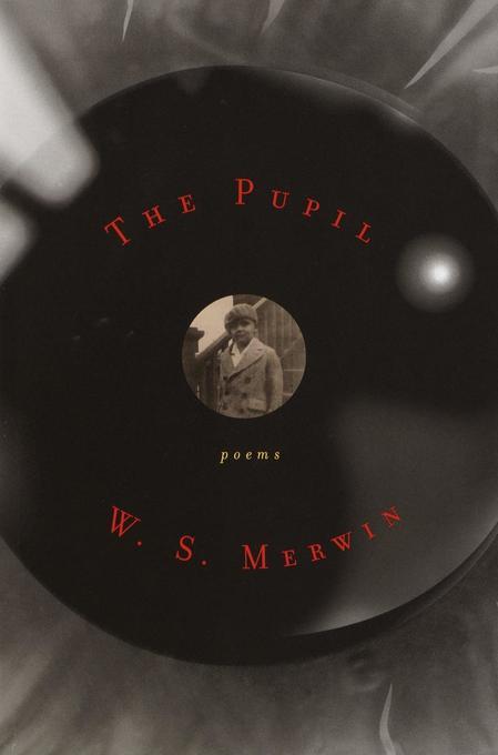 The Pupil: Poems als Taschenbuch