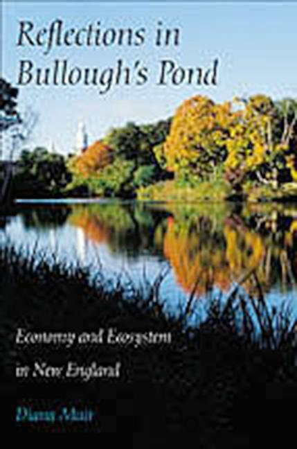 Reflections in Bullough S Pond: Economy and Ecosystem in New England als Taschenbuch