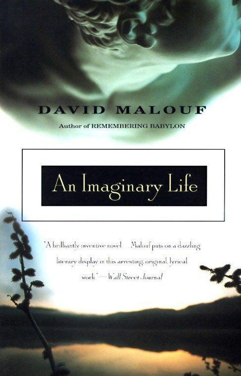 An Imaginary Life als Taschenbuch