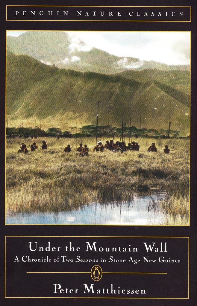 Under the Mountain Wall als Taschenbuch
