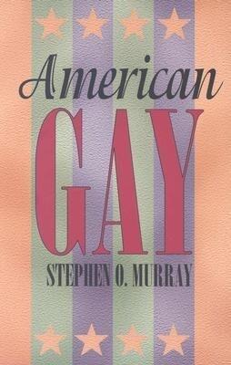 American Gay als Taschenbuch