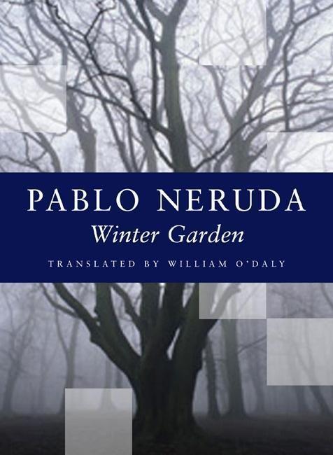 Winter Garden als Taschenbuch