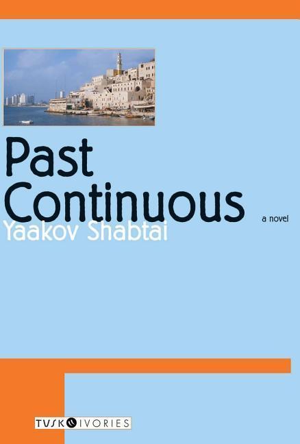 Past Continuous als Taschenbuch