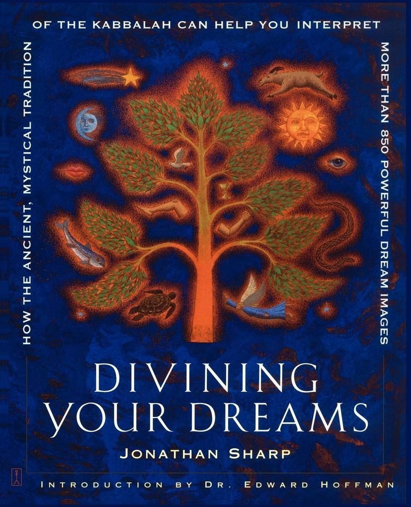Divining Your Dreams als Buch