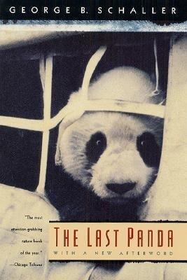 The Last Panda als Taschenbuch