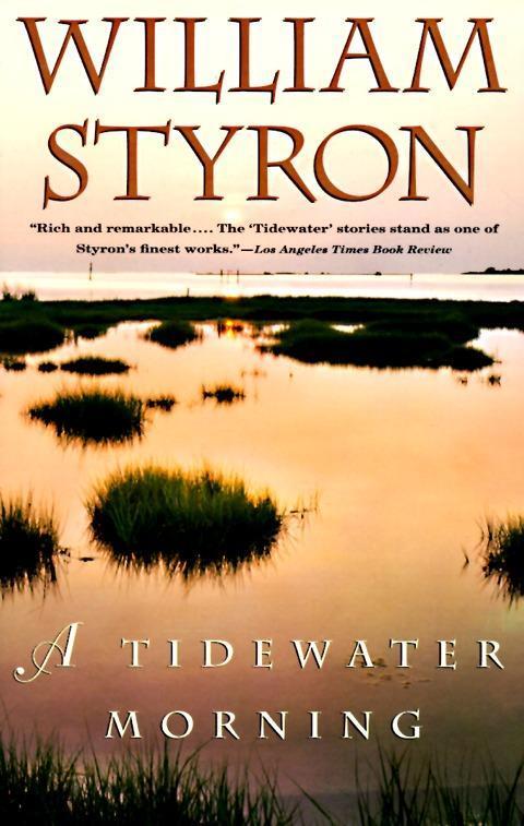 A Tidewater Morning als Taschenbuch
