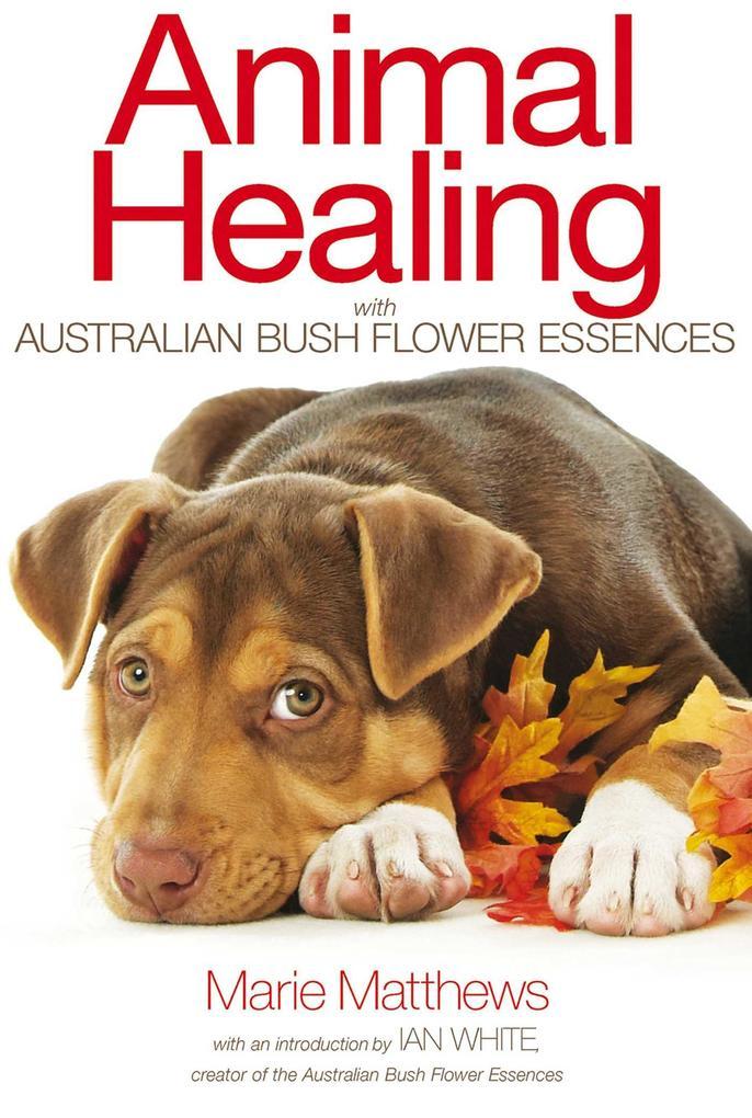 Animal Healing with Australian Bush Flower Esse...