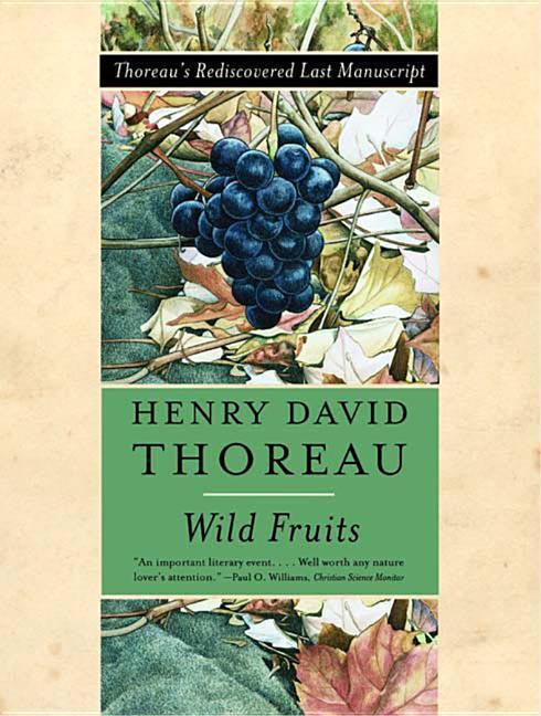 Wild Fruits: Thoreau's Rediscovered Last Manuscript als Taschenbuch