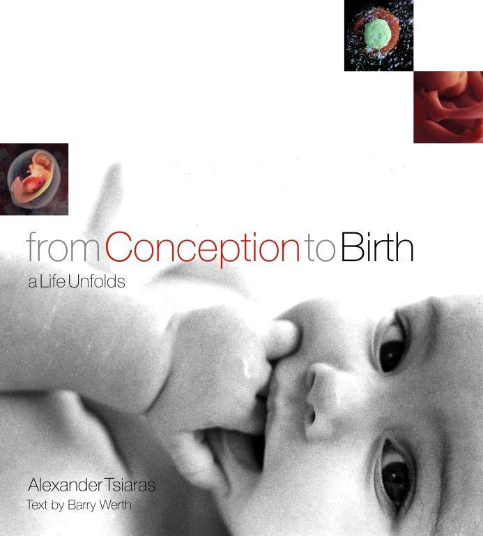From Conception to Birth: A Life Unfolds als Buch