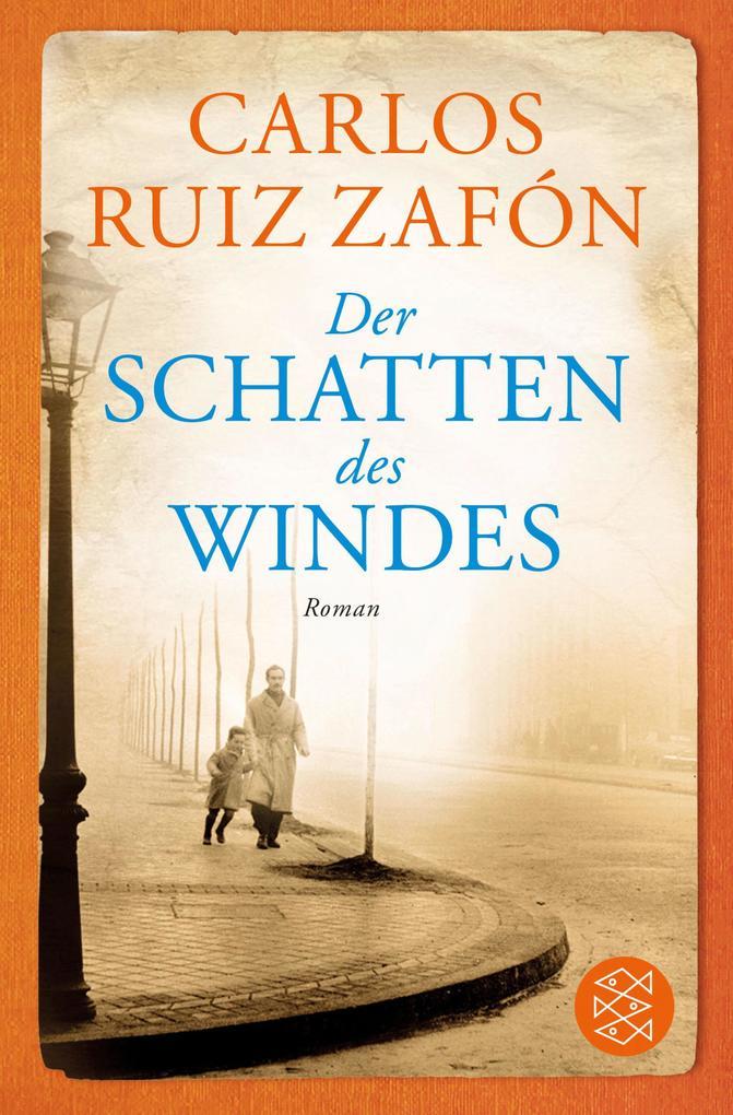 Der Schatten des Windes als eBook