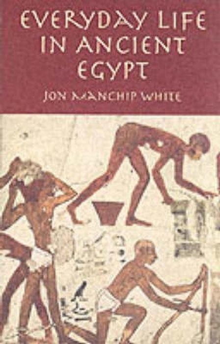 Everyday Life in Ancient Egypt als Taschenbuch
