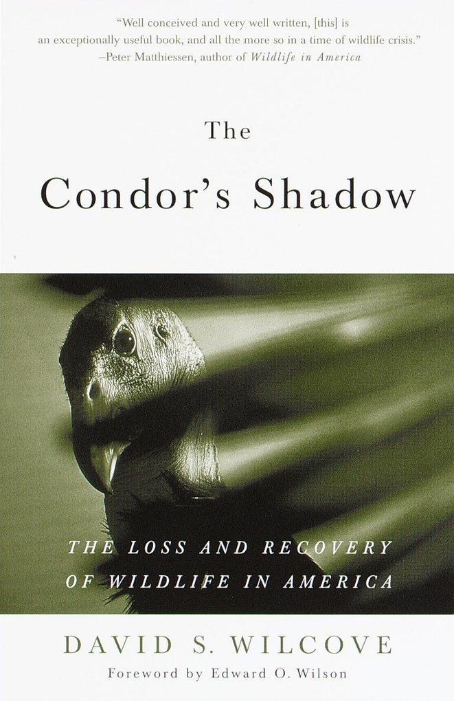 The Condor's Shadow: The Loss and Recovery of Wildlife in America als Taschenbuch