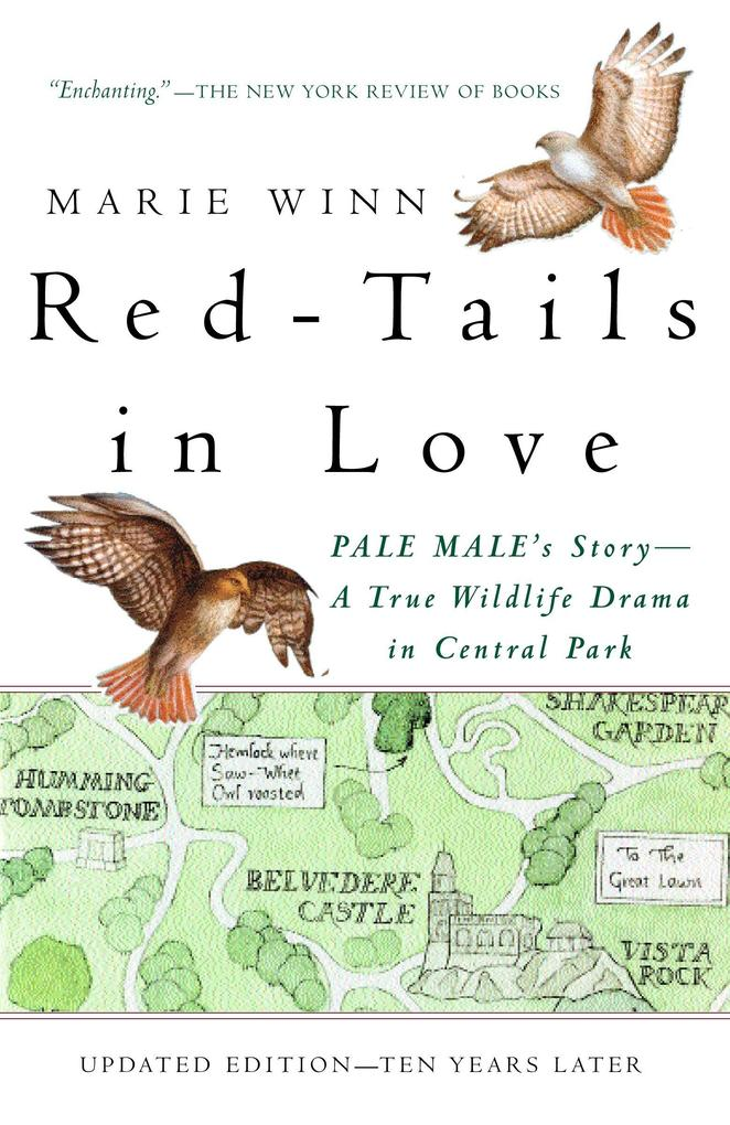 Red-Tails in Love: Pale Male's Story--A True Wildlife Drama in Central Park als Taschenbuch