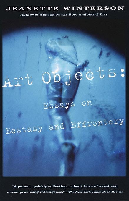 Art Objects: Essays on Ecstasy and Effrontery als Taschenbuch