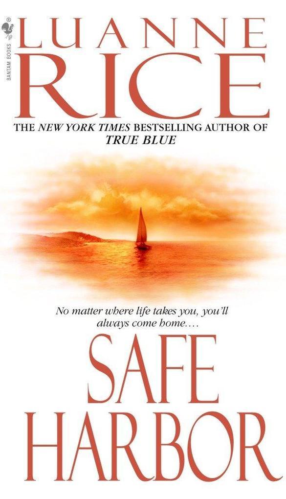 Safe Harbor als Taschenbuch