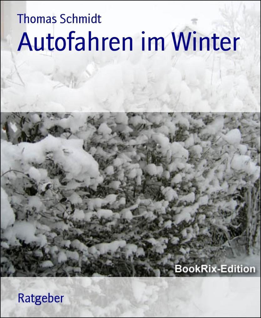 Autofahren im Winter als eBook