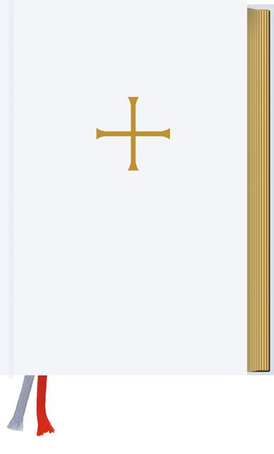 Gotteslob. Katholisches Gebet- und Gesangbuch. Ausgabe für die Diözese Eichstätt als Buch