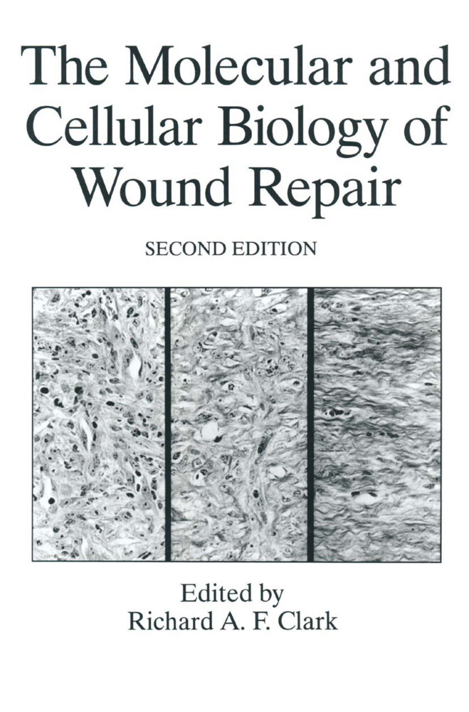 The Molecular and Cellular Biology of Wound Repair als Buch