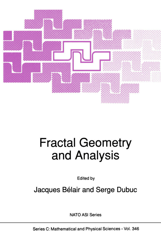 FRACTAL GEOMETRY & ANALYSIS 19 als Buch