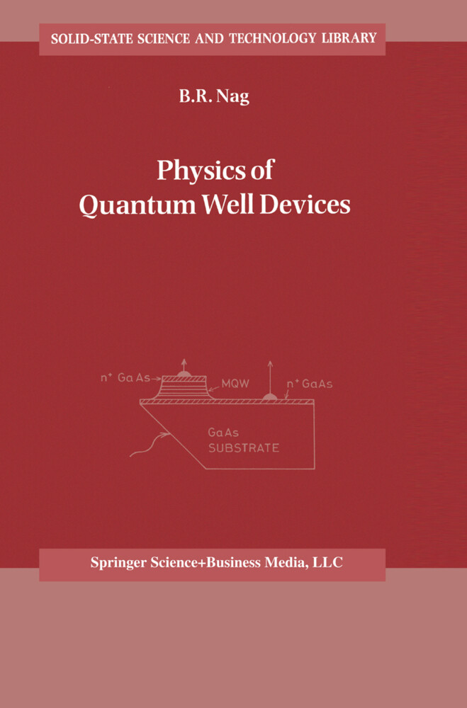 Physics of Quantum Well Devices als Buch