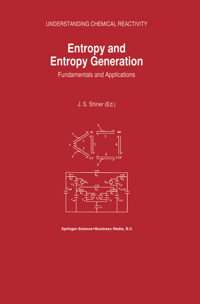 Entropy and Entropy Generation als Buch