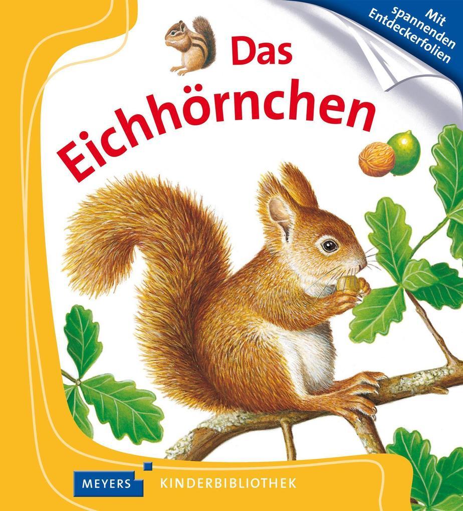 Das Eichhörnchen als Buch