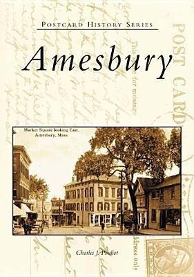 Amesbury als Taschenbuch