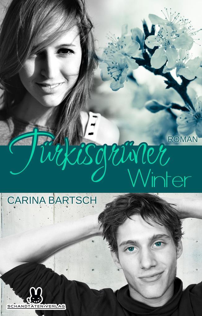 Türkisgrüner Winter als eBook