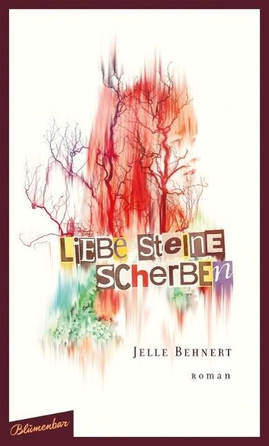 Liebe Steine Scherben als Buch von Jelle Behnert