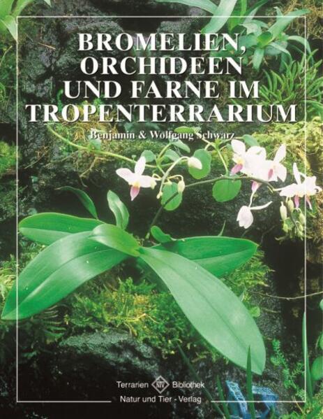 Bromelien, Orchideen und Farne im Tropenterrarium als Buch