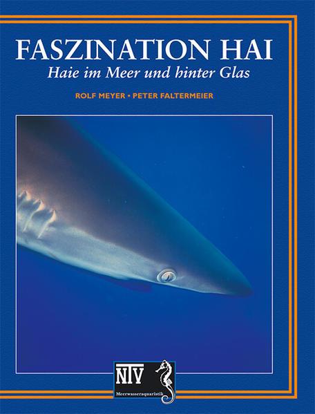 Faszination Hai als Buch