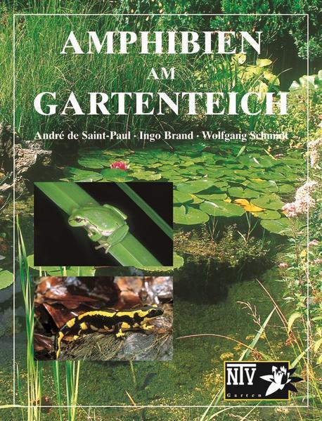 Amphibien am Gartenteich als Buch