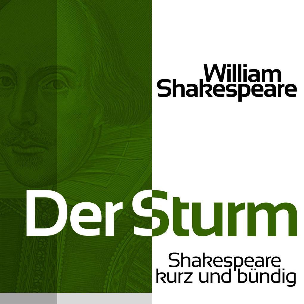 Der Sturm als Hörbuch Download