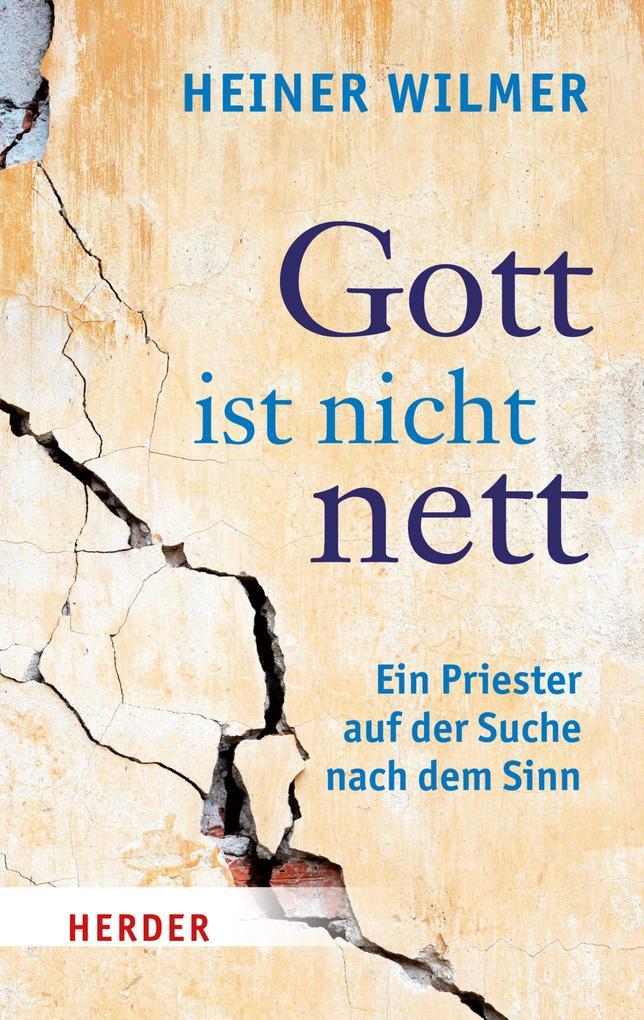 Gott ist nicht nett als eBook