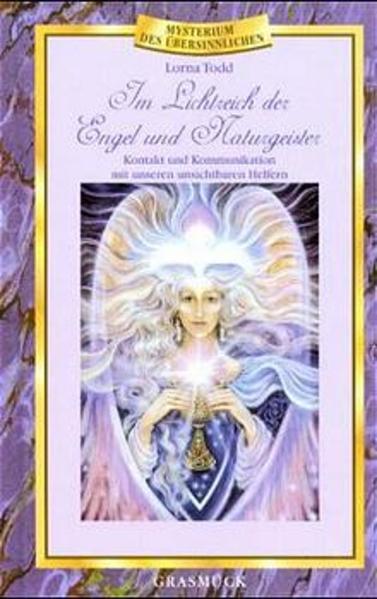 Im Lichtreich der Engel und Naturgeister als Buch