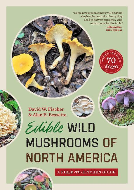 Edible Wild Mushrooms of North America: A Field-To-Kitchen Guide als Taschenbuch