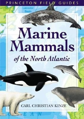 Marine Mammals of the North Atlantic als Taschenbuch