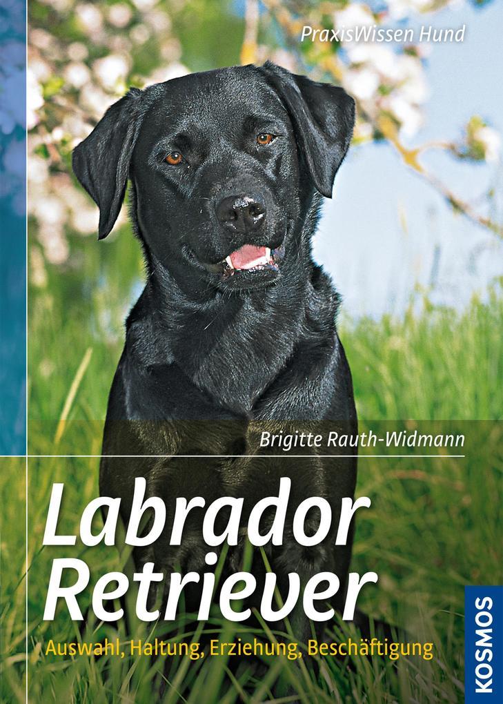 Labrador Retriever als eBook