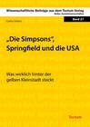 Die Simpsons, Springfield und die USA