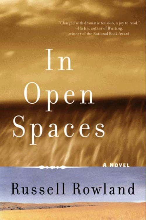 In Open Spaces als eBook