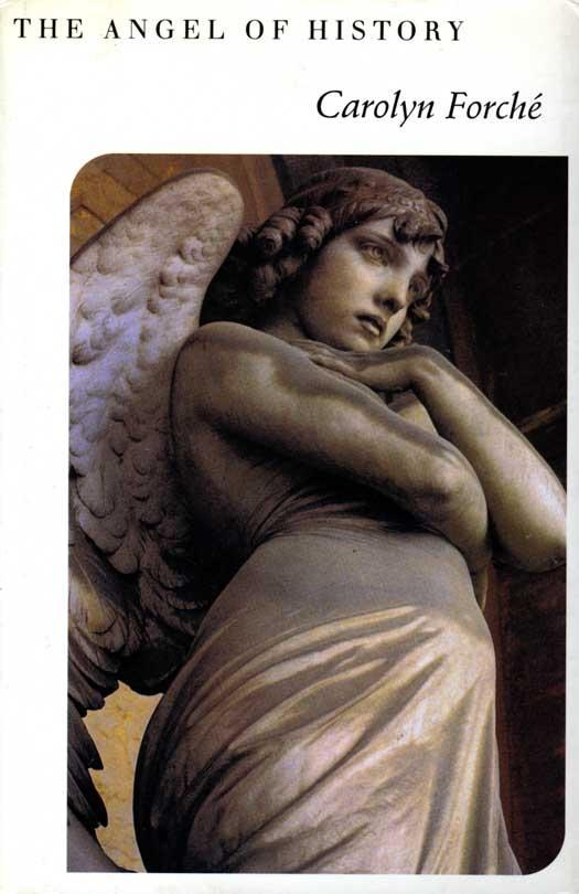 The Angel of History als eBook