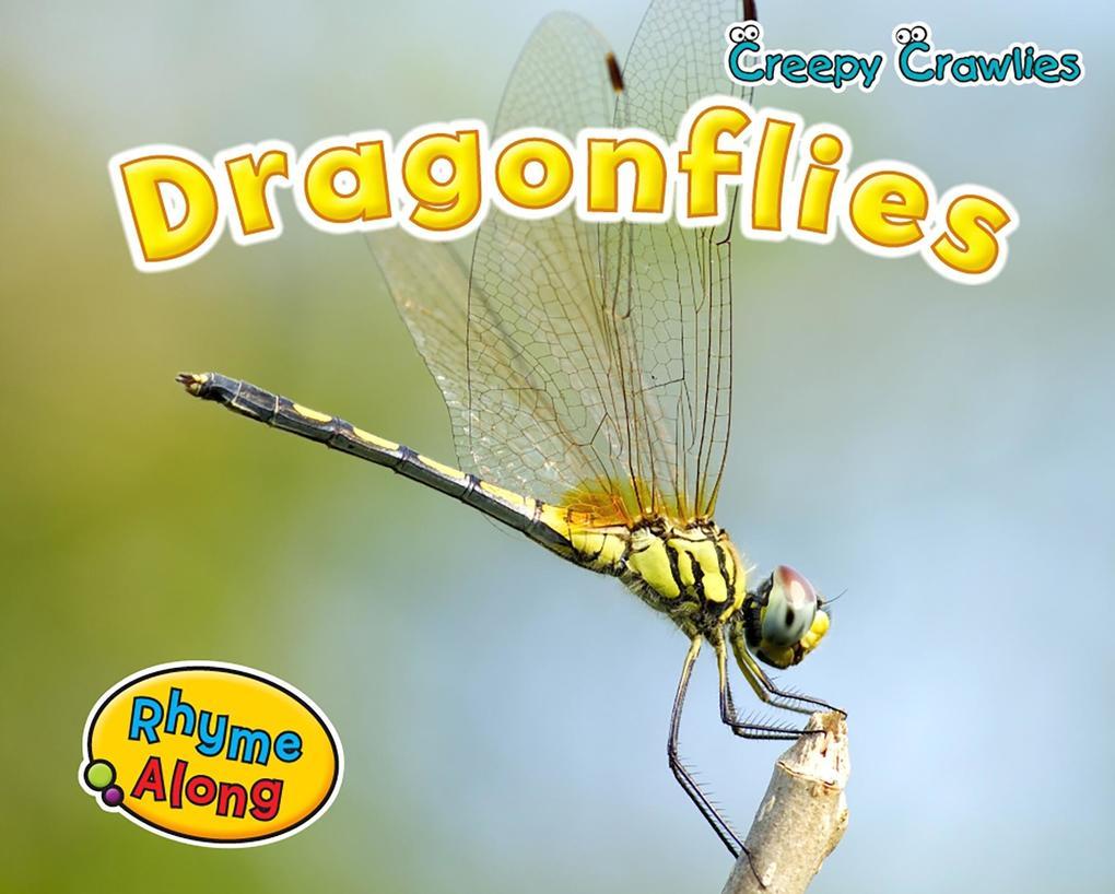 Dragonflies als eBook von Rebecca Rissman - Raintree UK