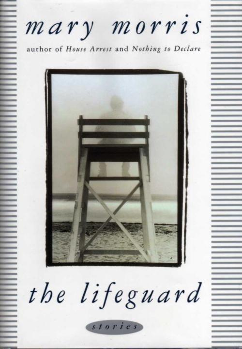 The Lifeguard als eBook