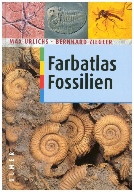 Farbatlas Fossilien als Buch