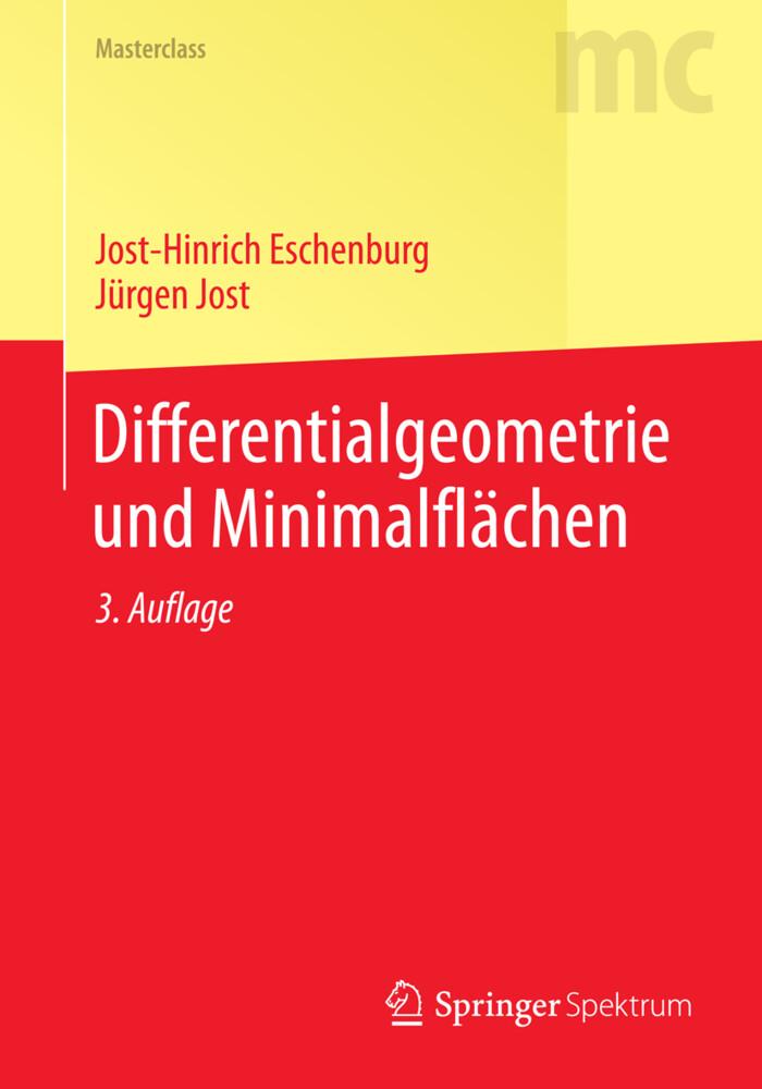 Differentialgeometrie und Minimalflächen als Buch