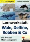 Lernwerkstatt Wale, Delfine, Robben & Co.