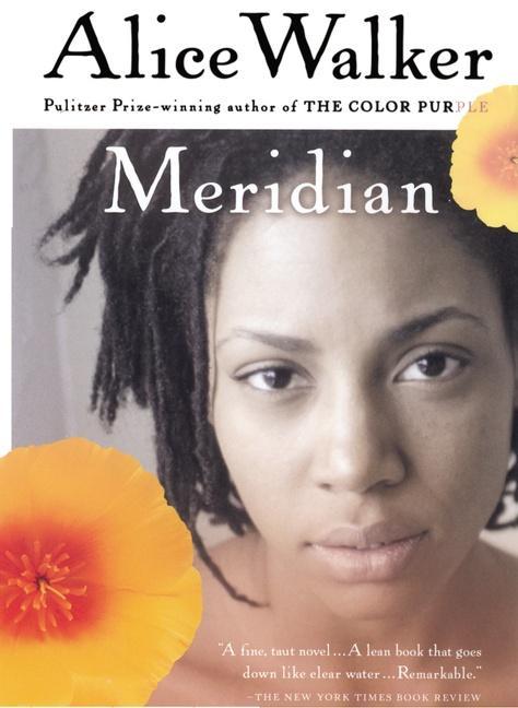 Meridian als Taschenbuch